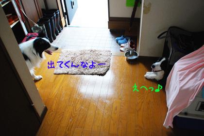 B_DSC_53710.JPG