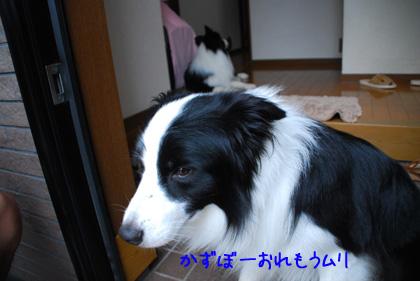 B_DSC_53724.JPG