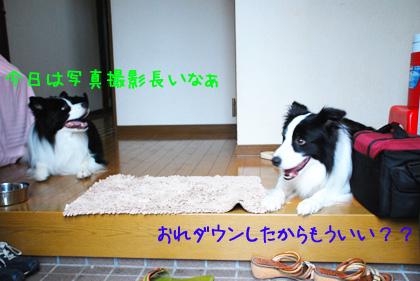 B_DSC_53720.JPG